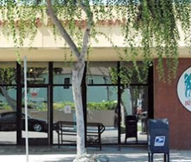 Belmont Brokerage & Management Inc
